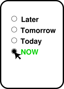 now-1272358_1280 (1)